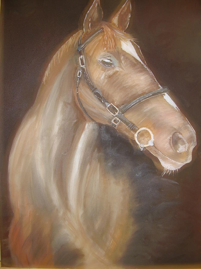 Equine Painting - Thoroughbred Stallion by Naomi Bowman