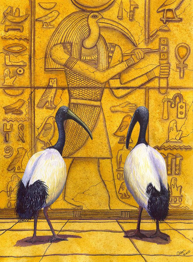 Ibis Painting - Thoth by Catherine G McElroy