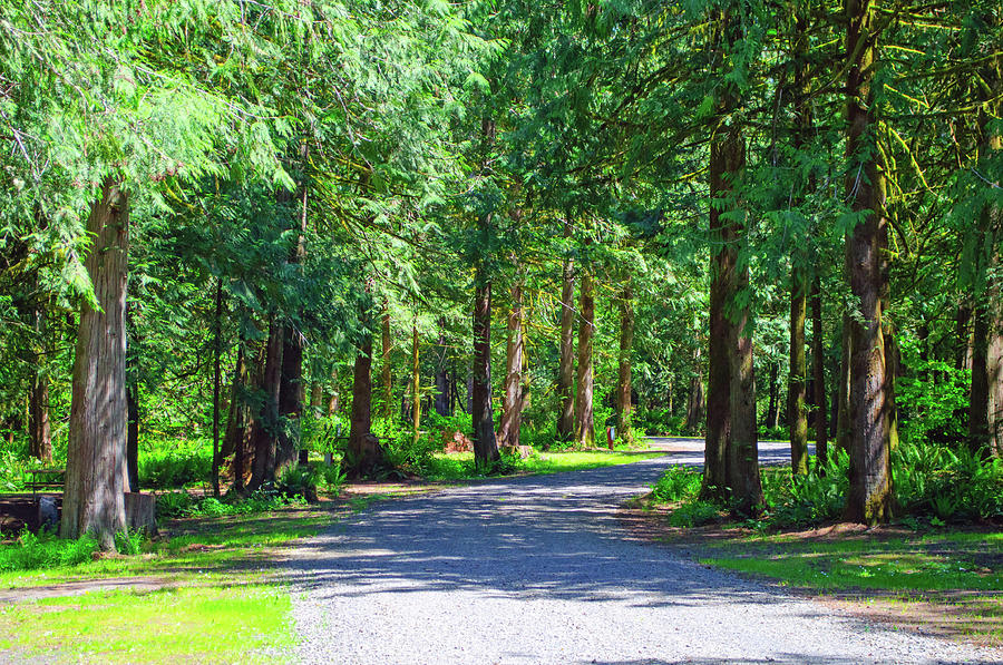 Thousand Trails Chehalis Resort by Tikvah's Hope