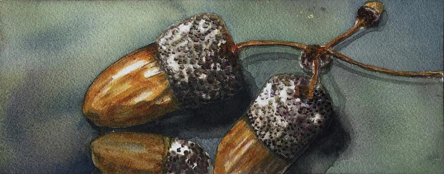 Watercolor Painting - Three Acorns by Grace Fong by Grace Fong