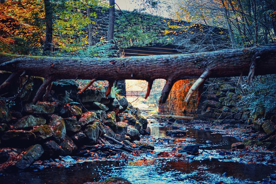 Bridge Photograph - Three Bridges  by Shelley Smith