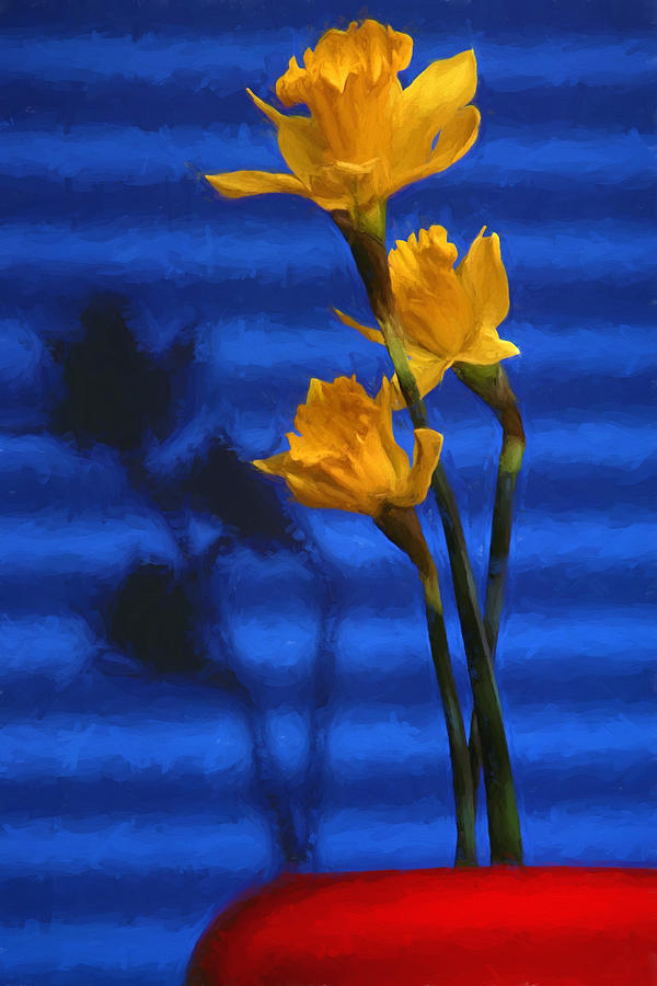 Three Cheers - Yellow Daffodils In A Red Bowl Photograph
