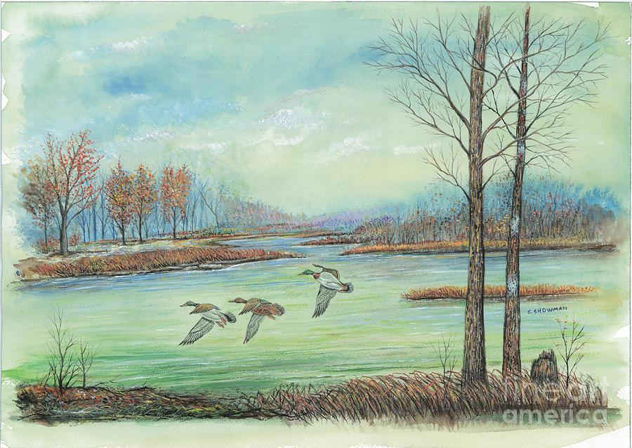 Ducks Painting - Three Ducks On A Blue Day by Samuel Showman