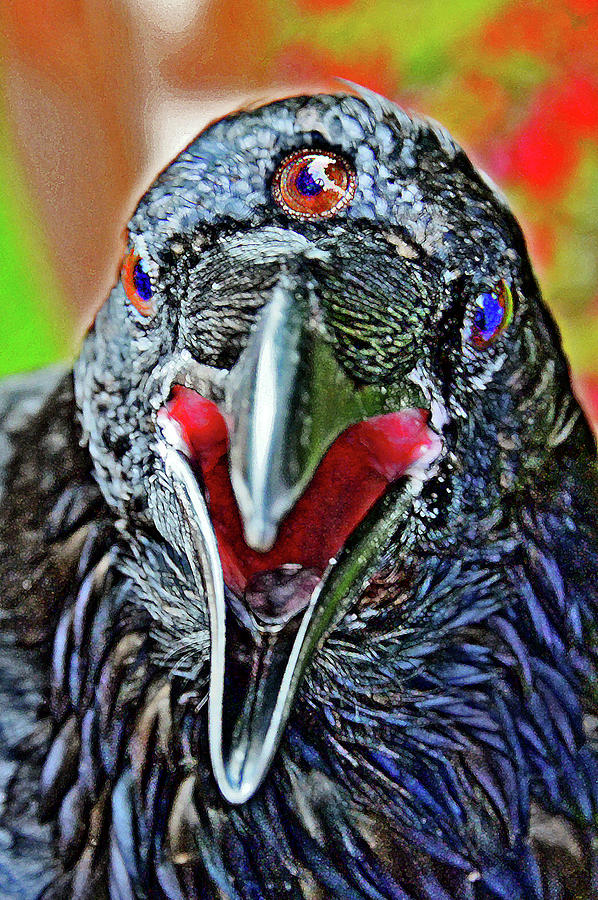Three-eyed raven. Game of thrones. Photograph by Andy i Za