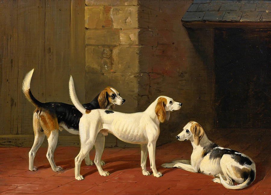 William Barraud Painting - Three Fox Hounds In A Paved Kennel Yard by William Barraud