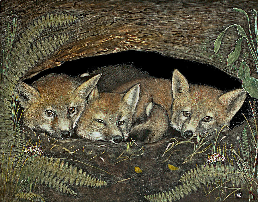 Three Foxes by Angie Cockle