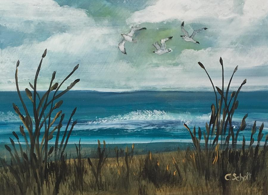 Three Gulls by Christina Schott