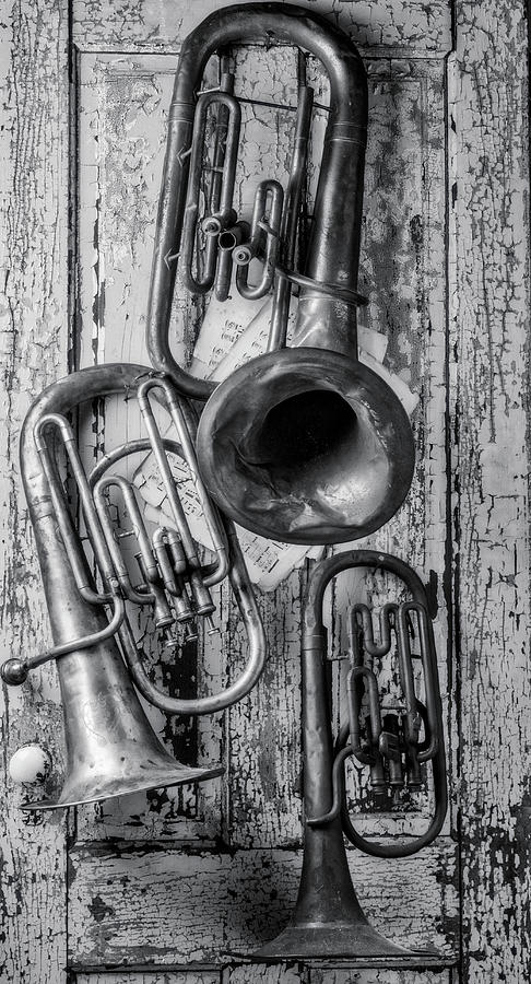 Tuba Photograph - Three Horns Hanging On Door by Garry Gay