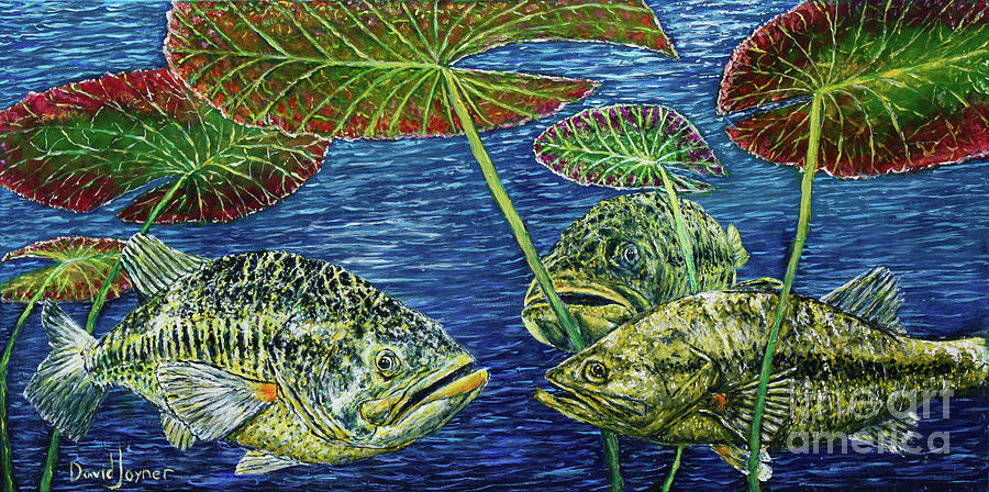 Fish Painting - Three Musketeers by David Joyner
