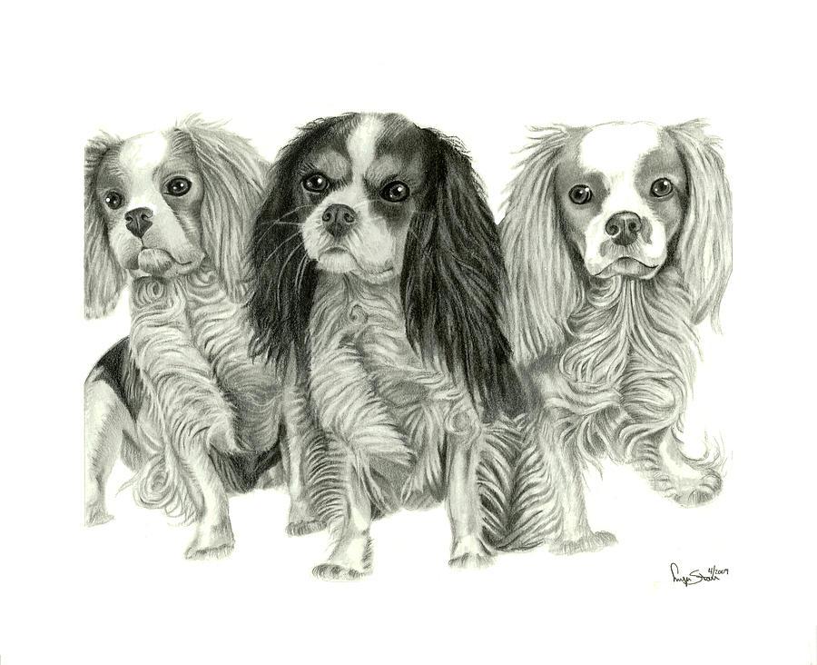 Puppies Drawing - Three Musketeers by Dawnstarstudios