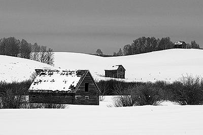 Landscape Photograph - Three Old Cabins by Gene Mace