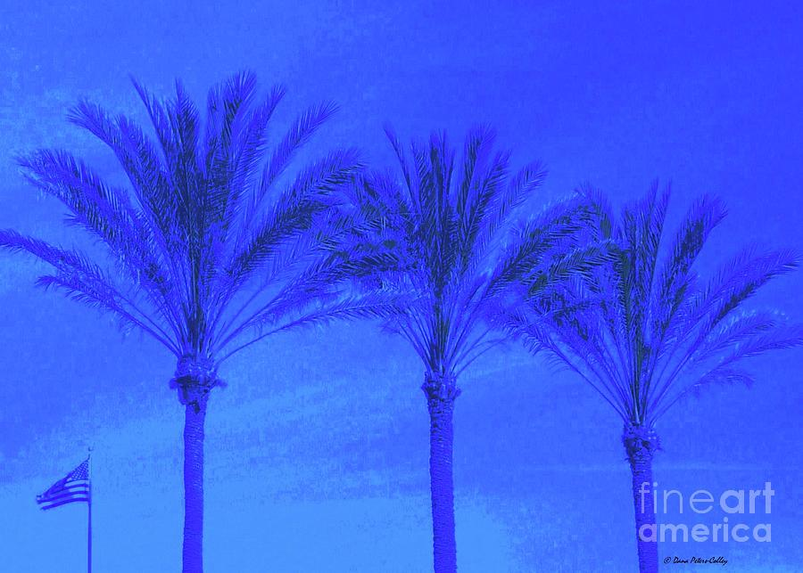 Blue Photograph - Three Palms And One Flag by Dana Peters-Colley
