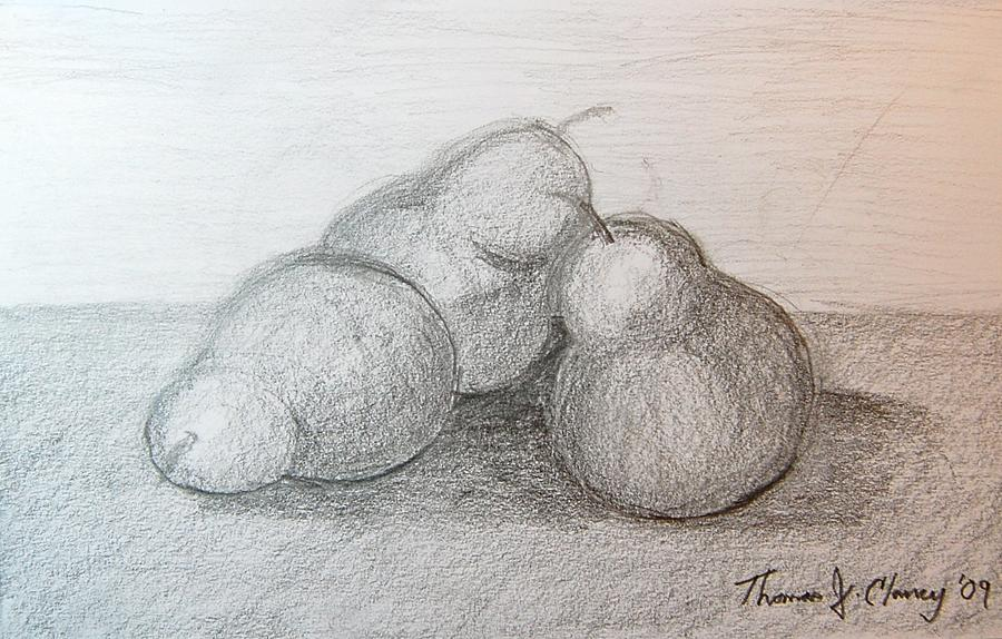 Three Pear Sketch Drawing By Thomas Clancy