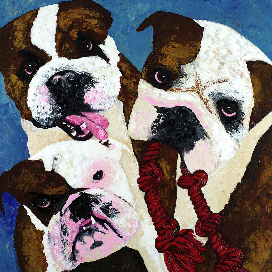 Bulldogs Painting - Three Playful Bullies by Megan Morris Collection