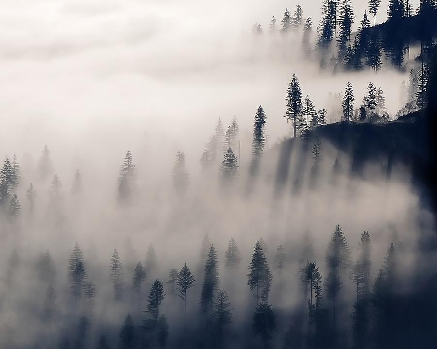 Three Ridges Fog Photograph
