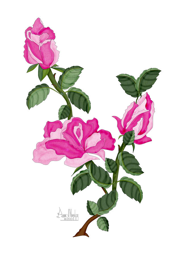 Roses Painting - Three Roses in the Garden by Anne Norskog