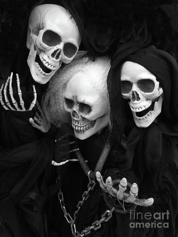 skull and bones photograph spooky scary skeletons halloween skeleton black and white spooky gothic