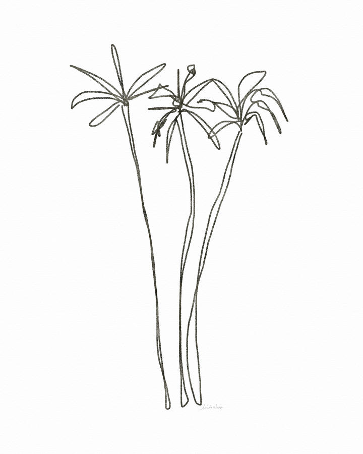 Line Drawing Palm Tree : Three tall palm trees art by linda woods drawing