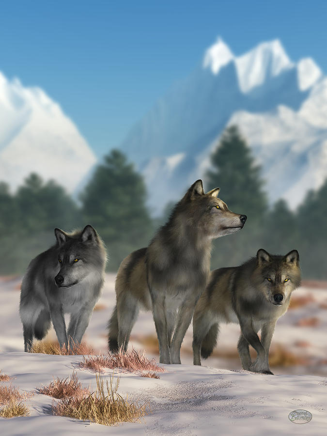 Three Wolves Digital Art - Three Wolves by Daniel Eskridge
