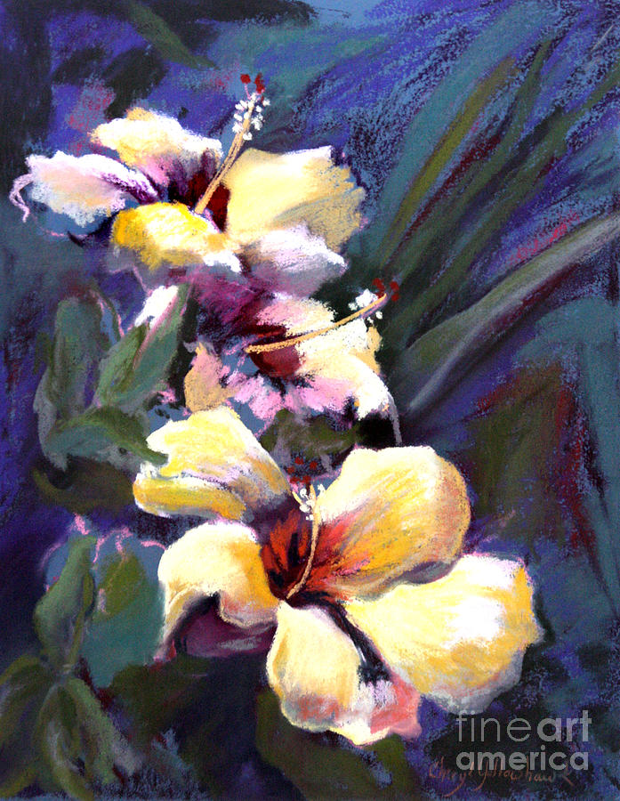 Hibiscus Pastel - Three Yellow Hibiscus by Cheryl Yellowhawk