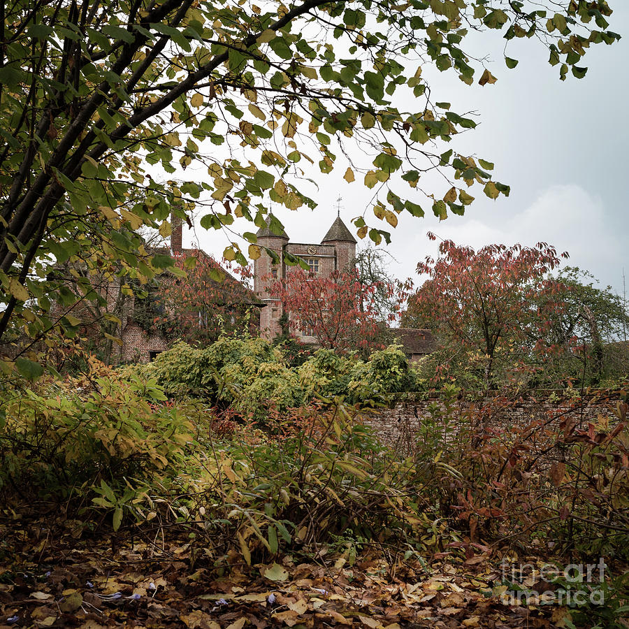 Through Leaves, Sissinghurst Castle Gardens Photograph by Perry ...