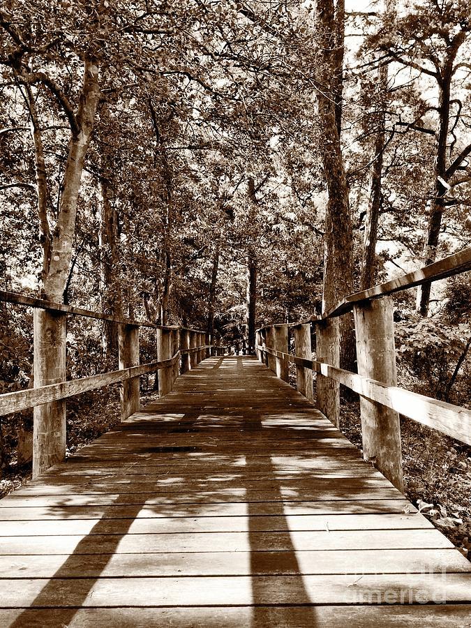 Bridge Photograph - Through The Narrow Path  by S Forte Designs