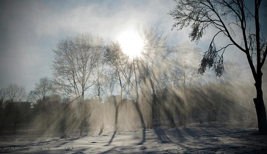 Snow Photograph - Through the snow by Konstantin Bibikov