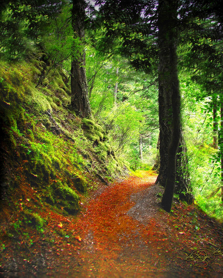 Path Digital Art - Through The Woods by Vicki Lea Eggen