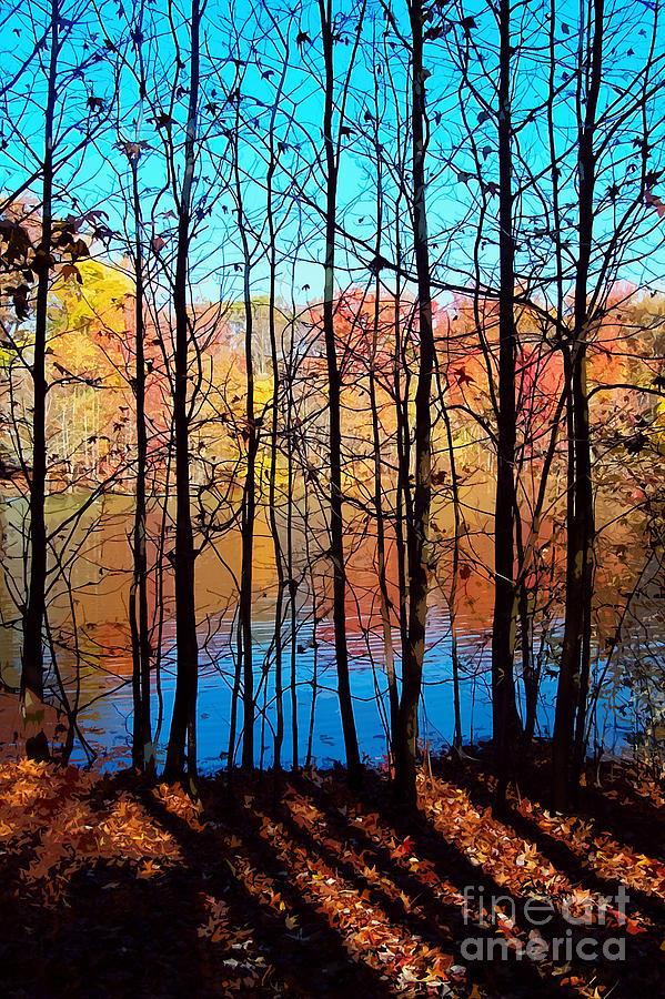 Autumn Photograph - Thru Trees by Andrew Kazmierski