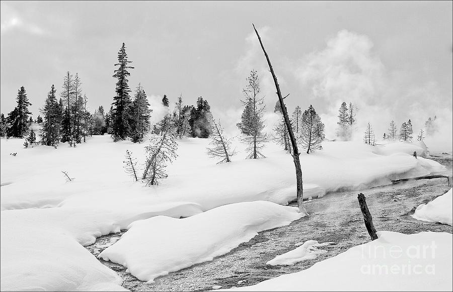 Yellowstone Photograph - Thumb Basin by Mark Braun