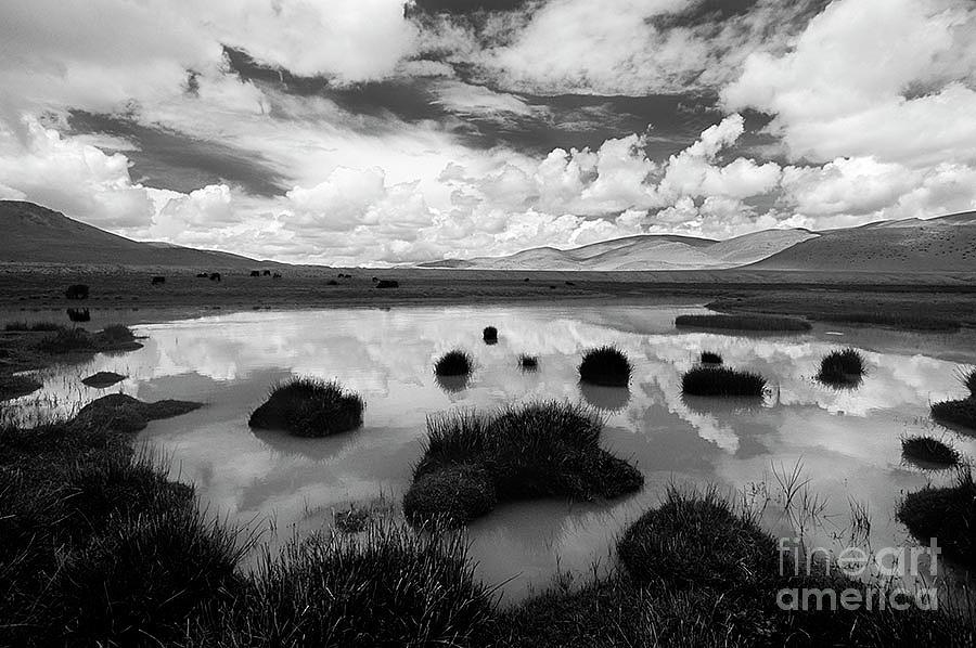 Tibetan Reflections by Craig Lovell