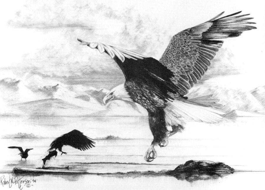 Wildlife Drawing - Tidal Bounty by Bob Patterson