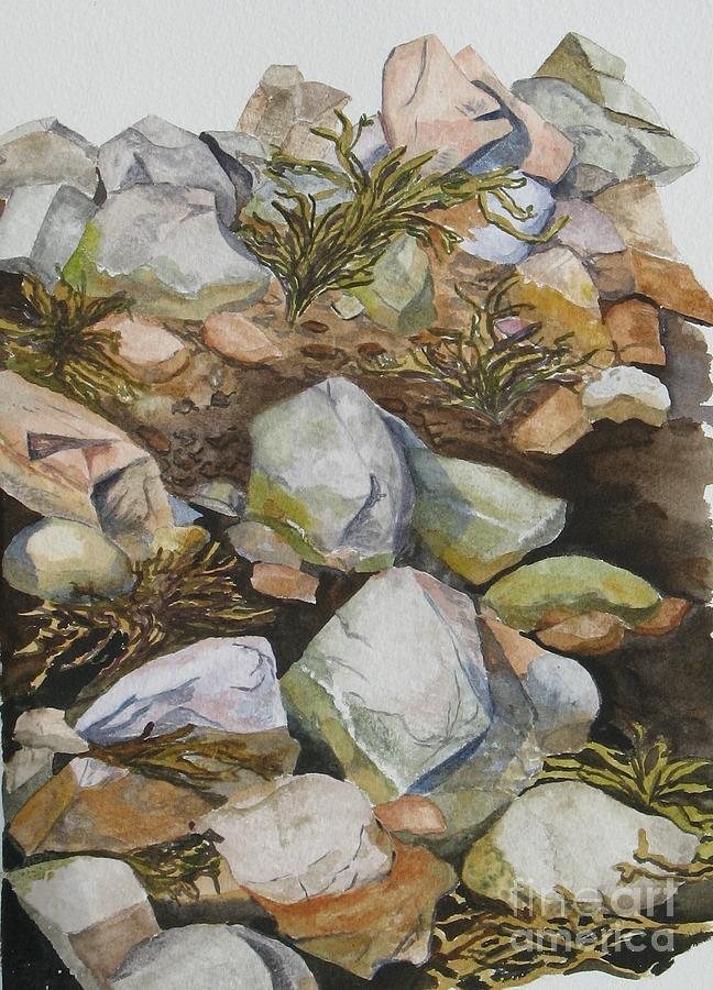 Tidal Pool Painting by Helen Shideler