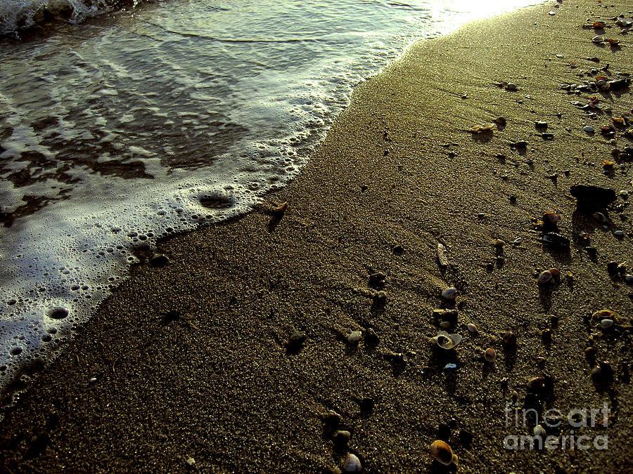 Beach Photograph - Tide by Silvie Kendall