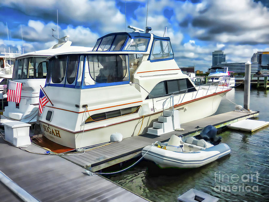 Beautiful View On The Elizabeth Painting - Tidewater Yacht Marina 5 by Lanjee Chee