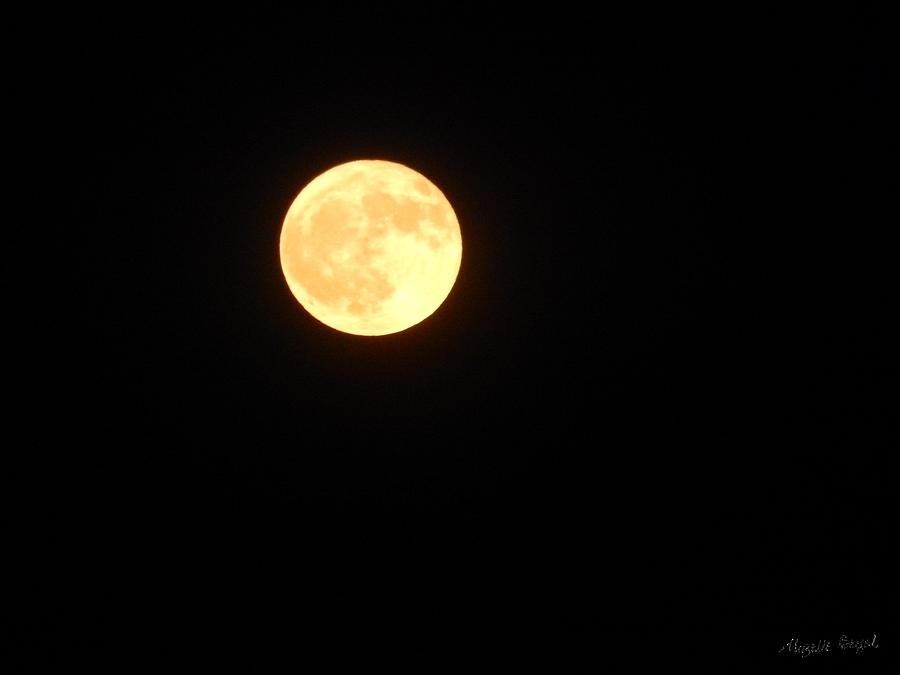 Tie Dyed Orange Moon by Mozelle Martin