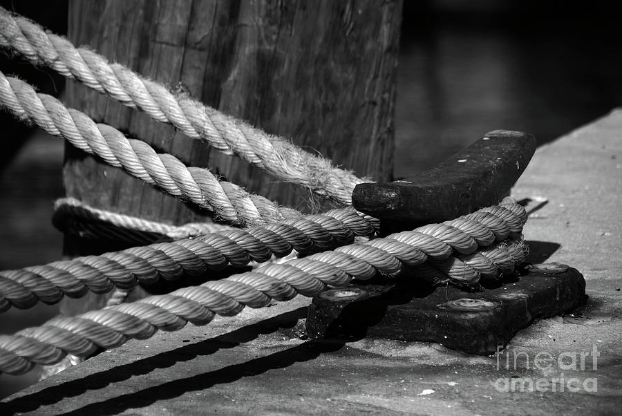 White Photograph - Tied Down by Susanne Van Hulst