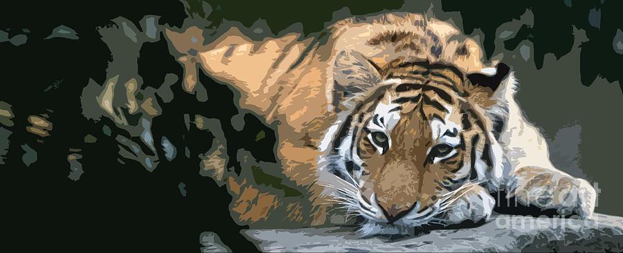 Tiger 15 by Rich Killion