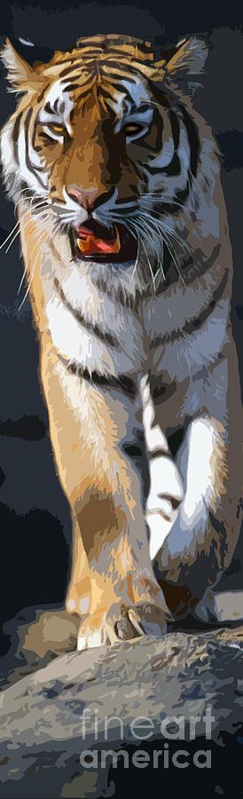 Tiger 16 Pano by Rich Killion