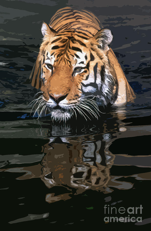 Tiger 17 by Rich Killion