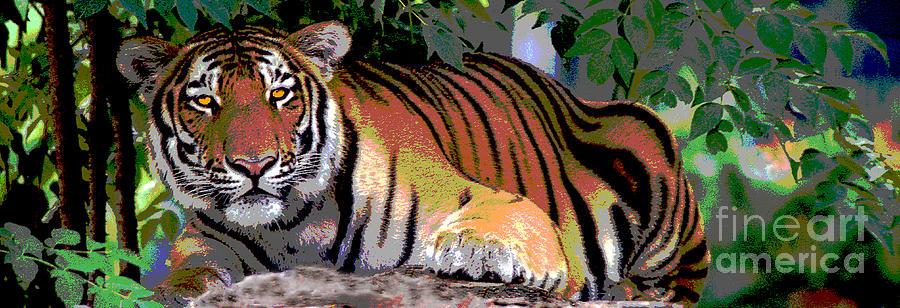 Tiger 18 by Rich Killion