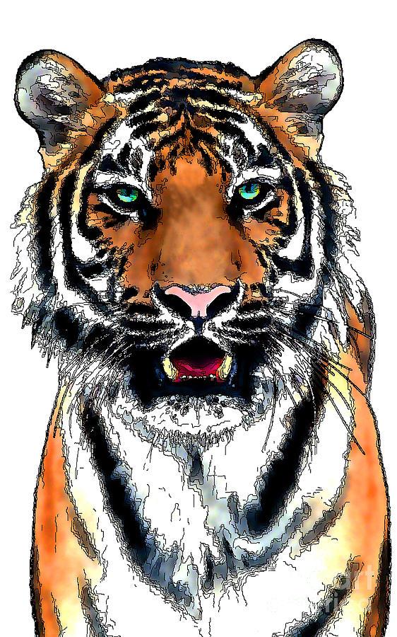 Tiger 19A by Rich Killion