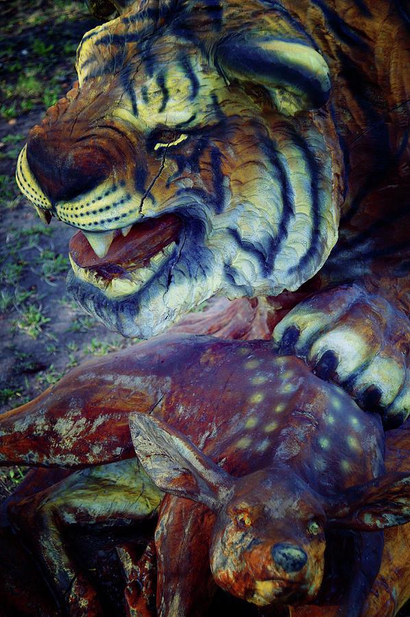 Tiger And Deer Photograph
