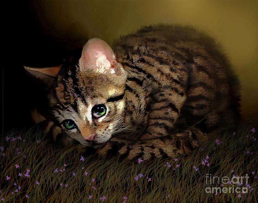 Kitten Digital Art - Tiger Ball by Robert Foster