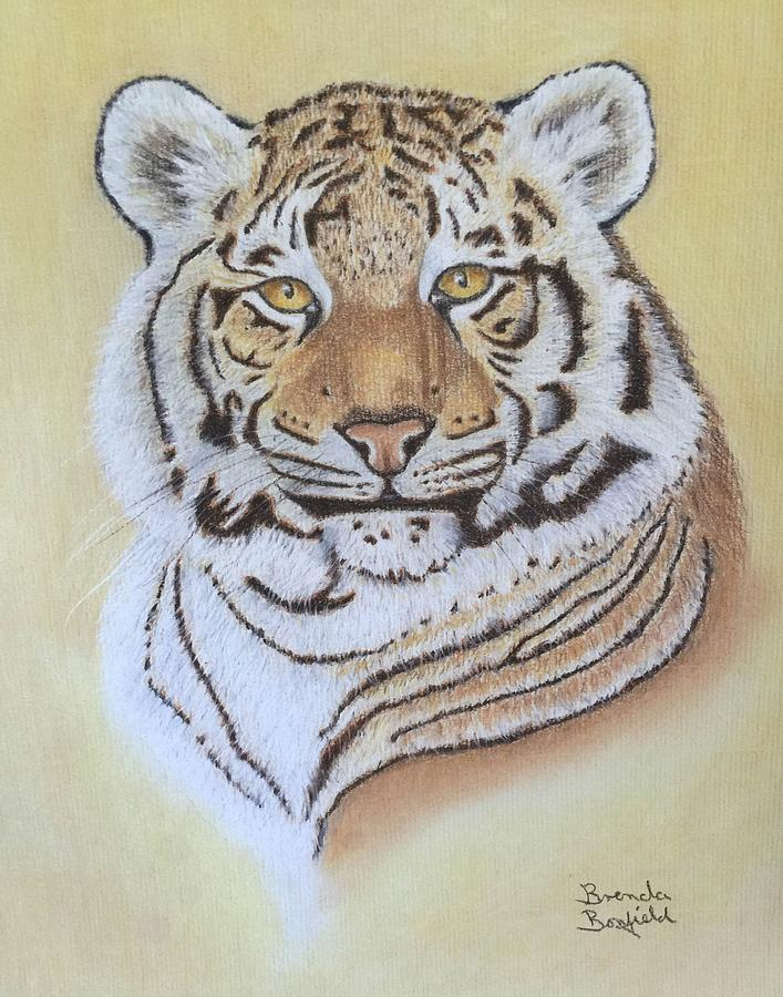 Tiger by Brenda Bonfield