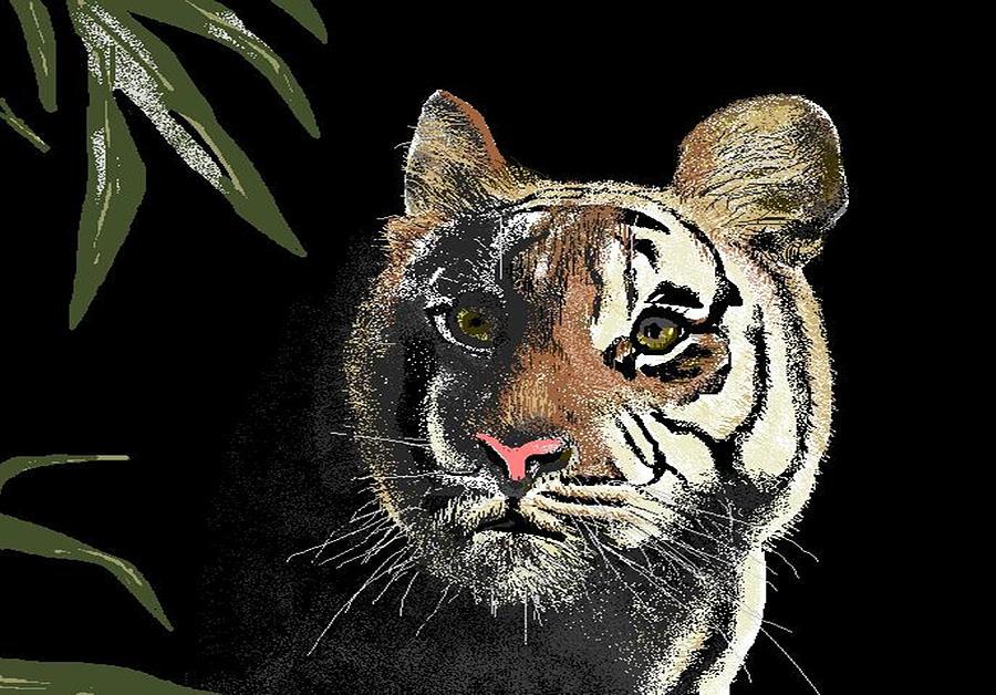 Tiger Digital Art - Tiger by Carole Boyd