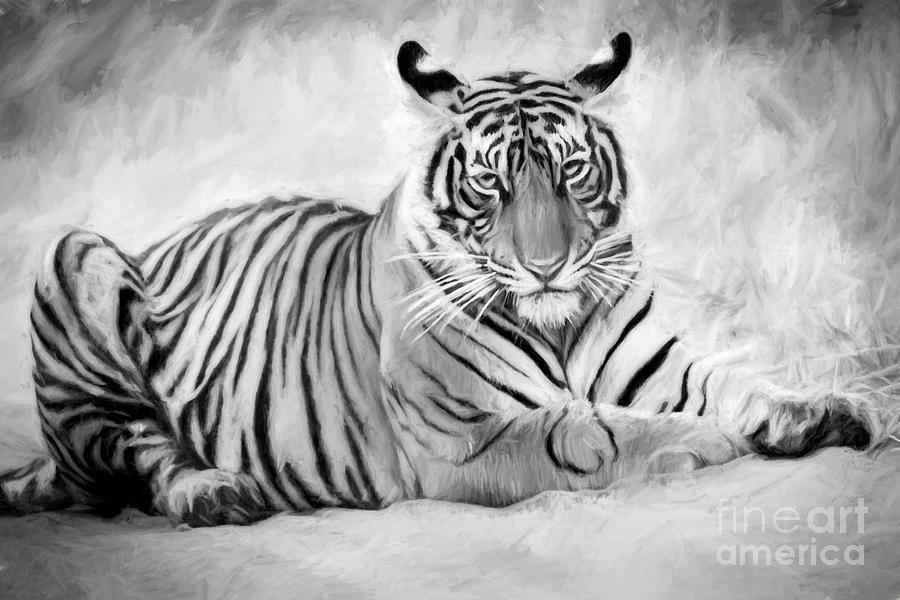 Wildlife Digital Art - Tiger Cub At Rest by Pravine Chester