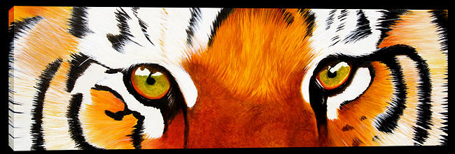 Tiger Painting - Tiger Eyes by Paul Whitton