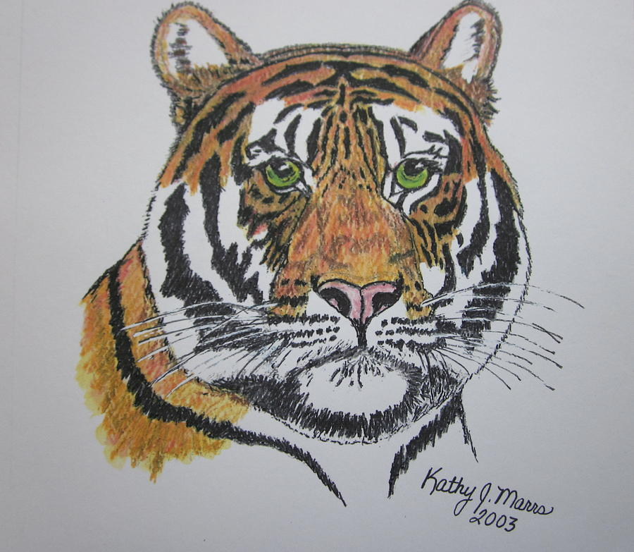 Bengal Painting - Tiger by Kathy Marrs Chandler