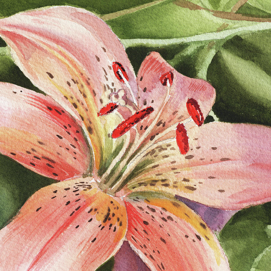 Tiger lily close up painting by irina sztukowski tiger lily painting tiger lily close up by irina sztukowski izmirmasajfo Images